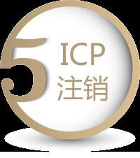 icpmore5.png